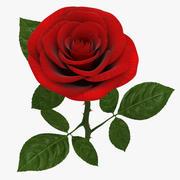 Rose Branch Red modelo 3d
