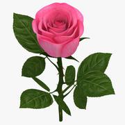 Rose Branch Rose 3d model