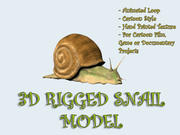 3D SNAIL MODEL RIGGED ANIMATED 3d model
