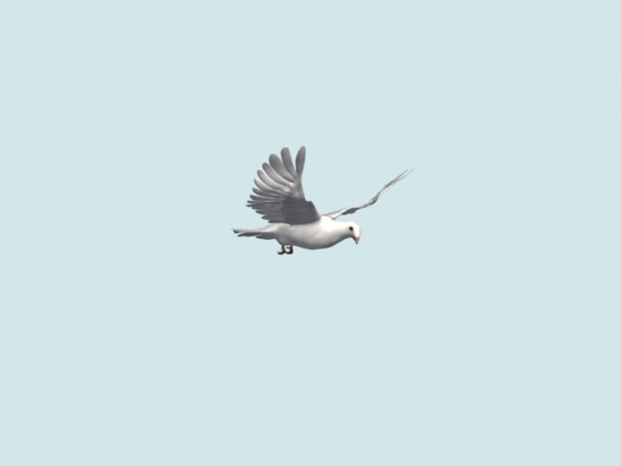 Model 3D animowany w technologii Low Poly Dove royalty-free 3d model - Preview no. 18