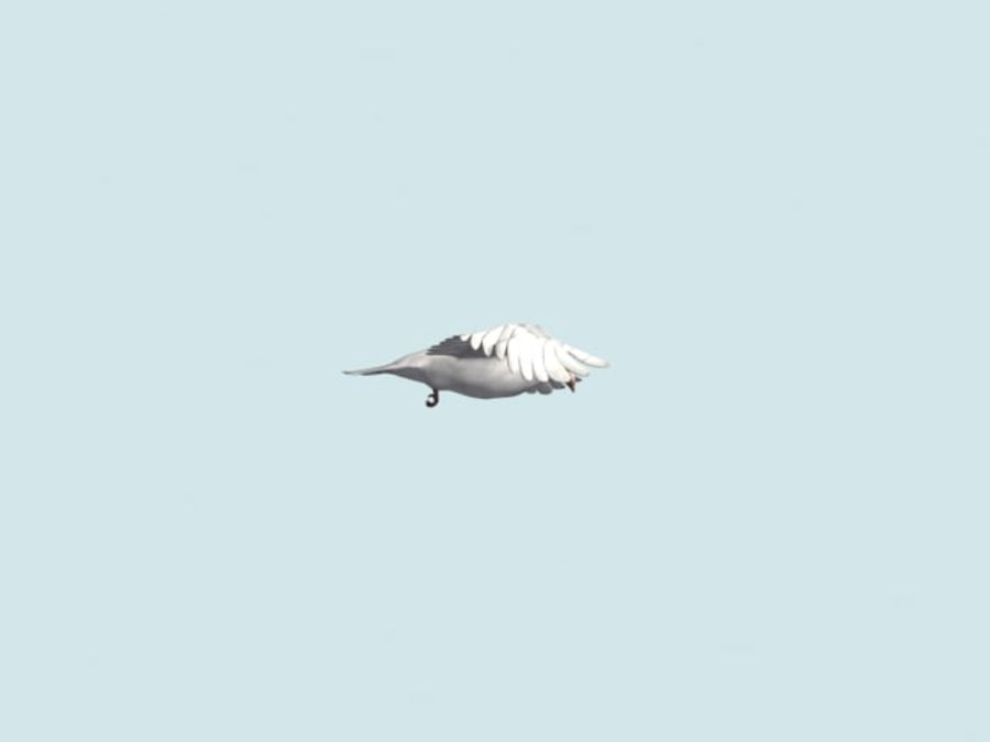 Model 3D animowany w technologii Low Poly Dove royalty-free 3d model - Preview no. 10