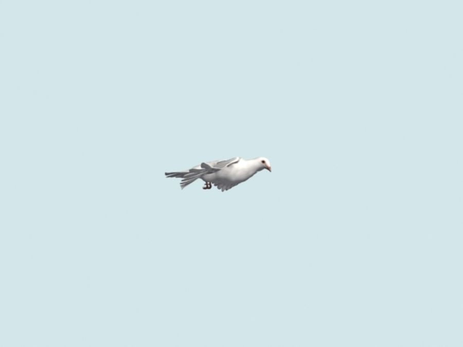 Model 3D animowany w technologii Low Poly Dove royalty-free 3d model - Preview no. 14