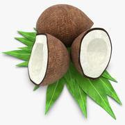 Noce di cocco 3d model