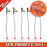 Down Hill Skiing Poles 3d model