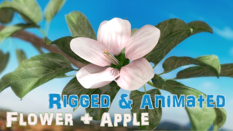 Apple Flower Bud / Branch - Rigged / Animated royalty-free 3d model - Preview no. 1