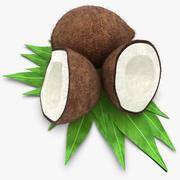 Kokosnöt (hår) 3d model