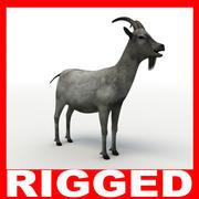 Goat (Rigged) 3d model