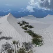 White & Gold Sand Desert 3d model