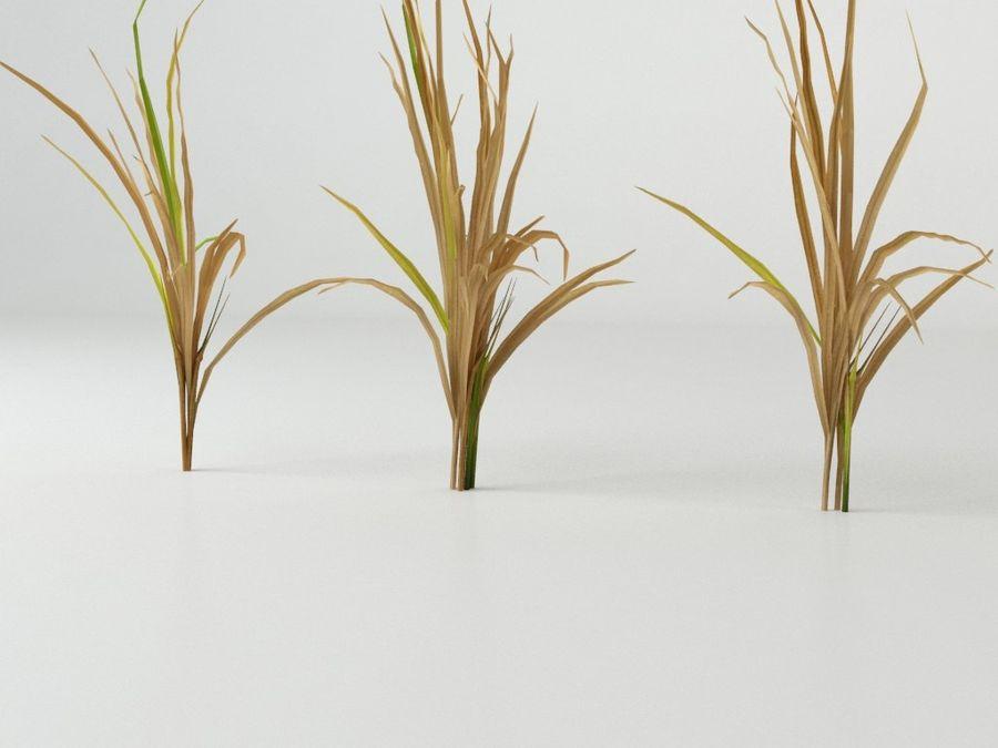 잔디와 식물 메가 팩 royalty-free 3d model - Preview no. 3
