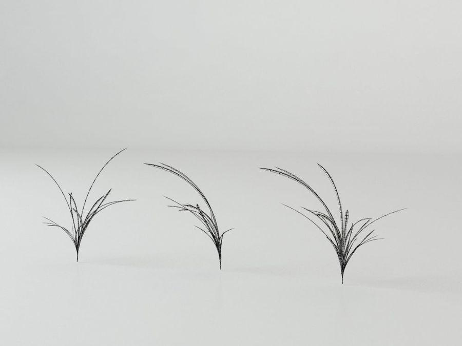 잔디와 식물 메가 팩 royalty-free 3d model - Preview no. 10