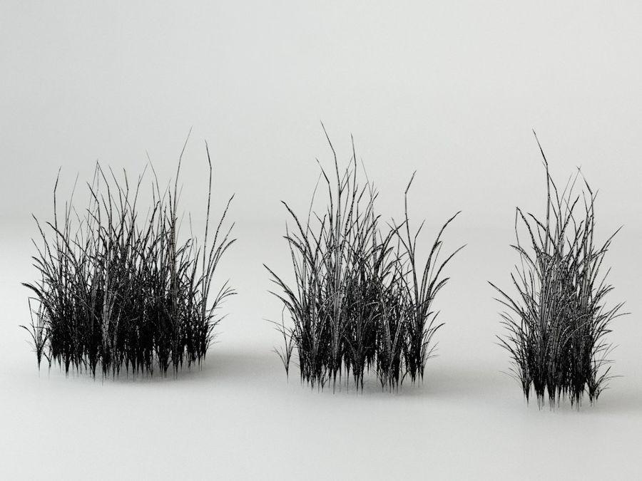 잔디와 식물 메가 팩 royalty-free 3d model - Preview no. 16