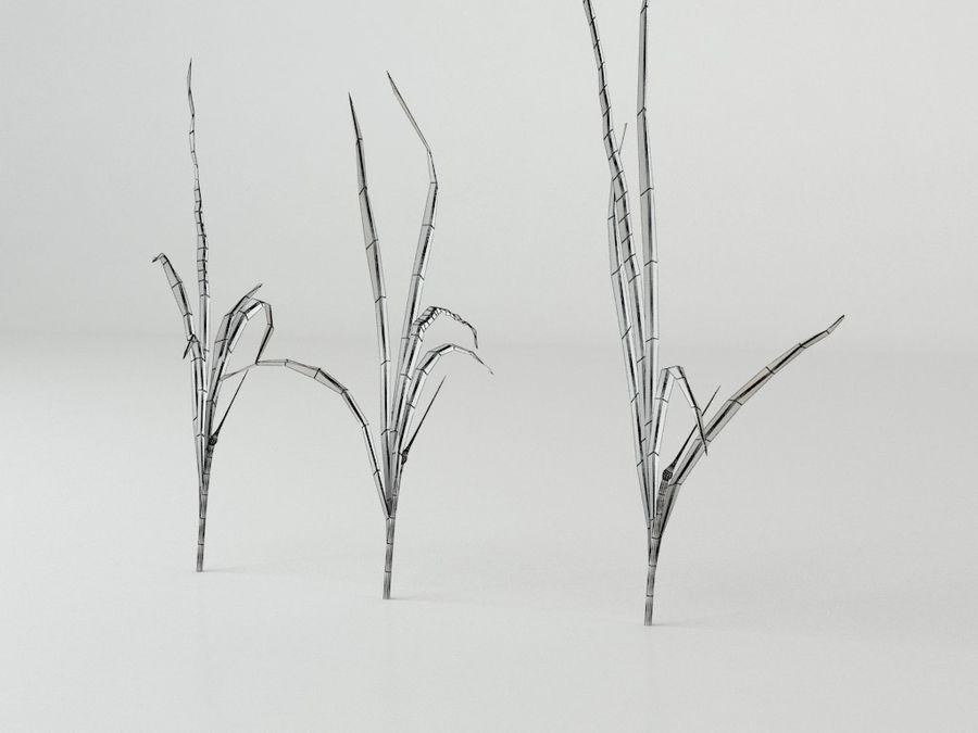잔디와 식물 메가 팩 royalty-free 3d model - Preview no. 14