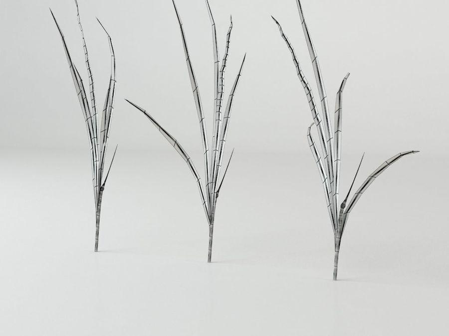 잔디와 식물 메가 팩 royalty-free 3d model - Preview no. 12