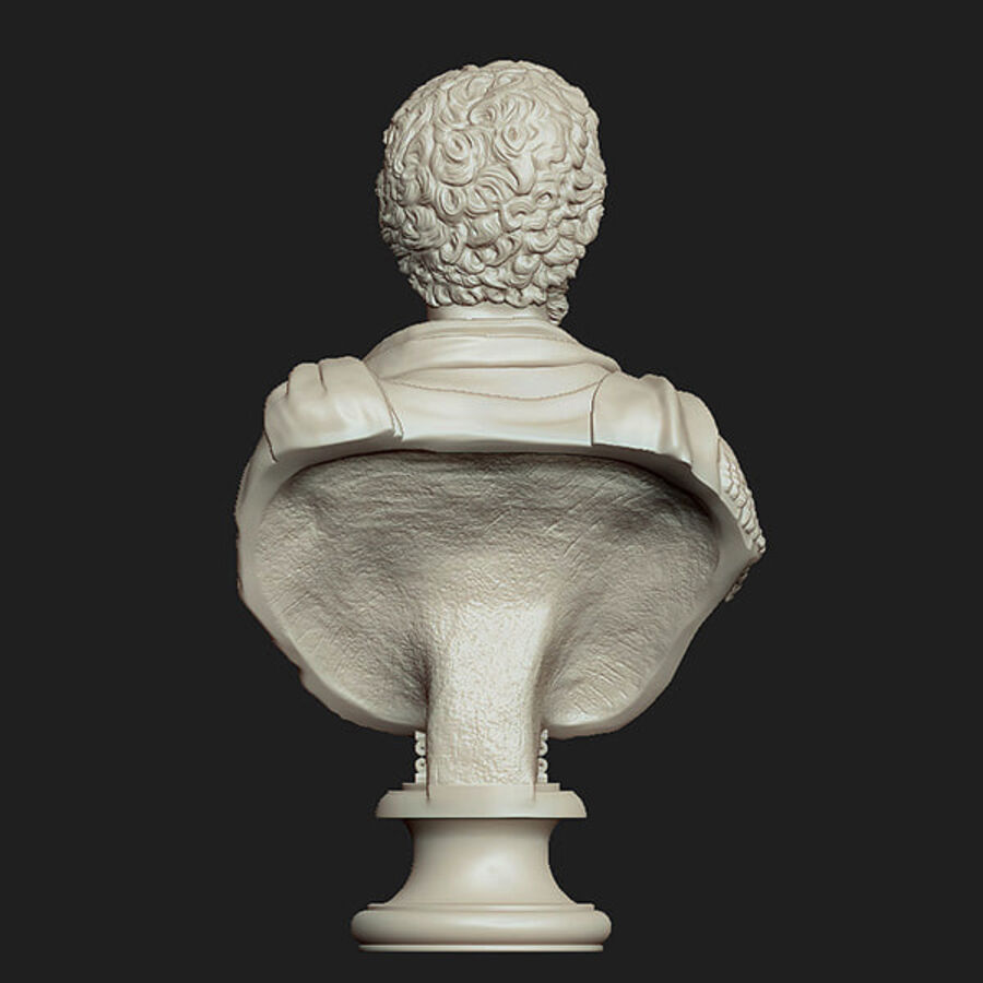 Printable bust of Septimius Severus Emperor royalty-free 3d model - Preview no. 4