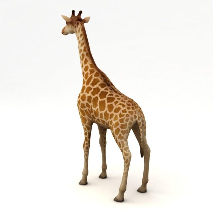 Giraffa armata royalty-free 3d model - Preview no. 3