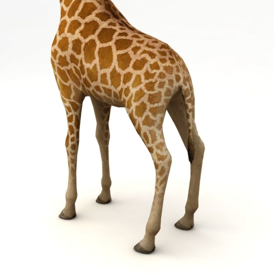 Giraffa armata royalty-free 3d model - Preview no. 7