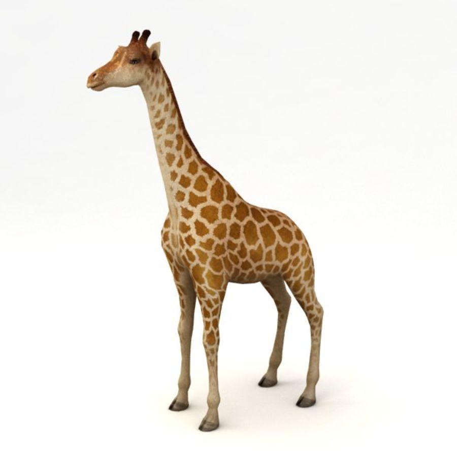 Giraffa armata royalty-free 3d model - Preview no. 2