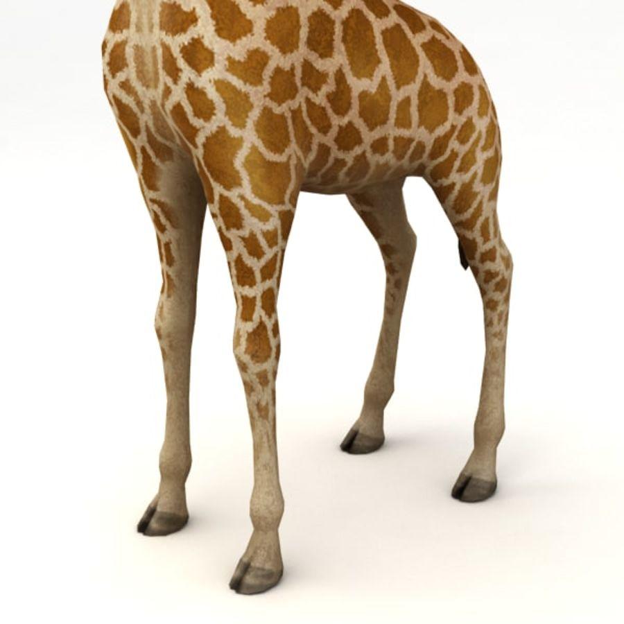 Giraffa armata royalty-free 3d model - Preview no. 5