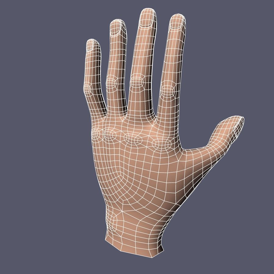 Hand Base UV Unwrapped royalty-free 3d model - Preview no. 9