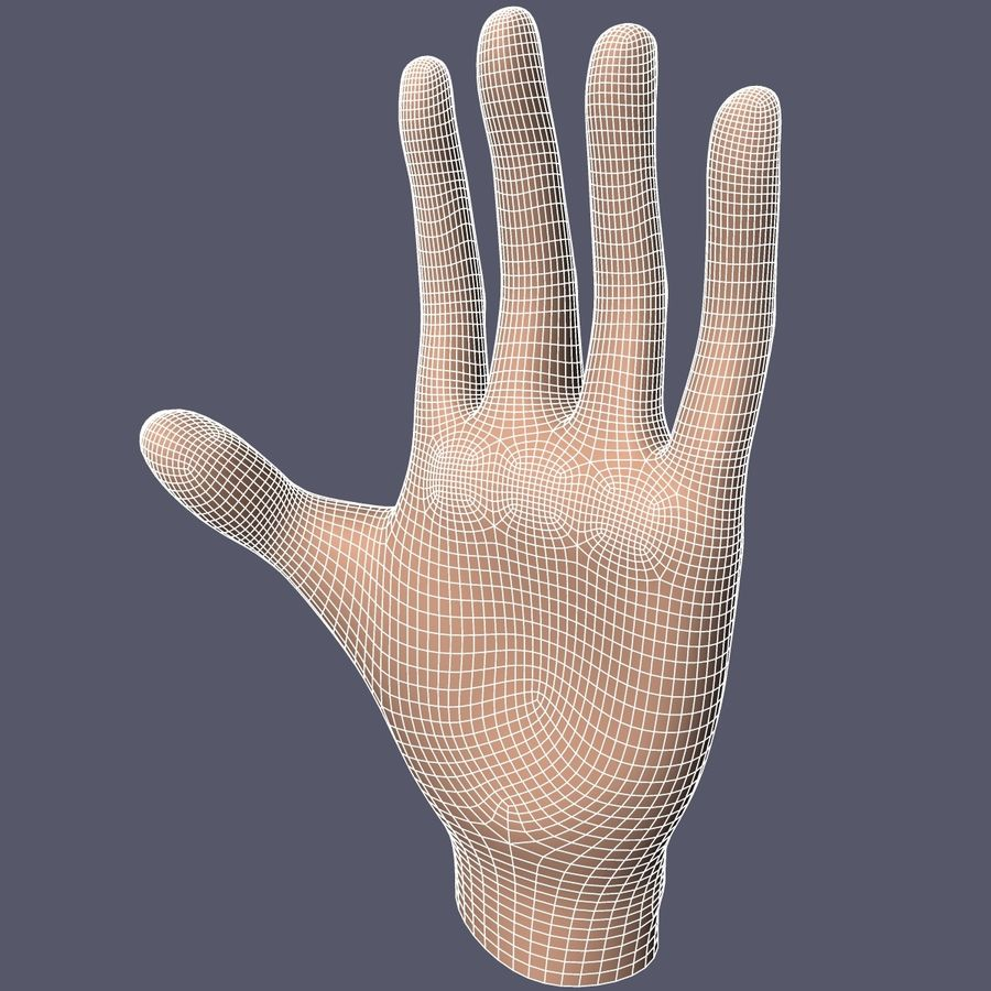Hand Base UV Unwrapped royalty-free 3d model - Preview no. 12