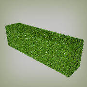 Hedge Multiscatter 3d model