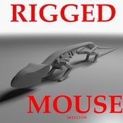 Rigged Mouse-Skelett 3d model