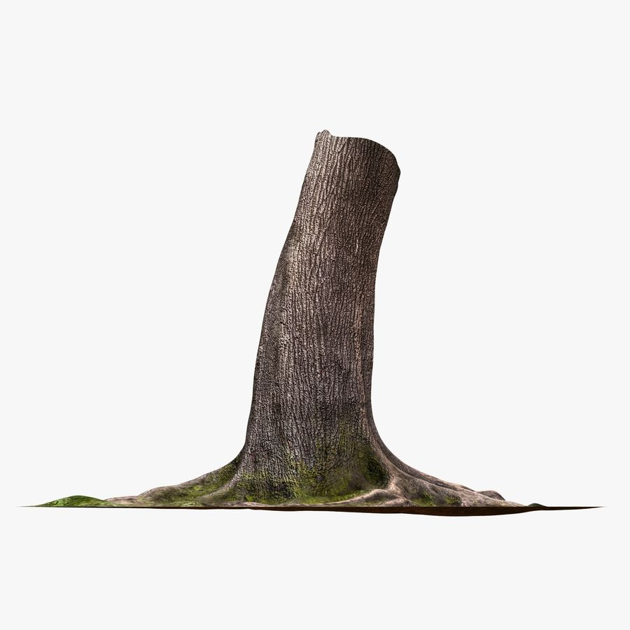 Tronco de arbol royalty-free modelo 3d - Preview no. 6