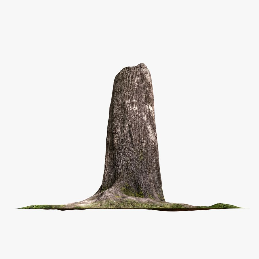 Tronco de arbol royalty-free modelo 3d - Preview no. 3