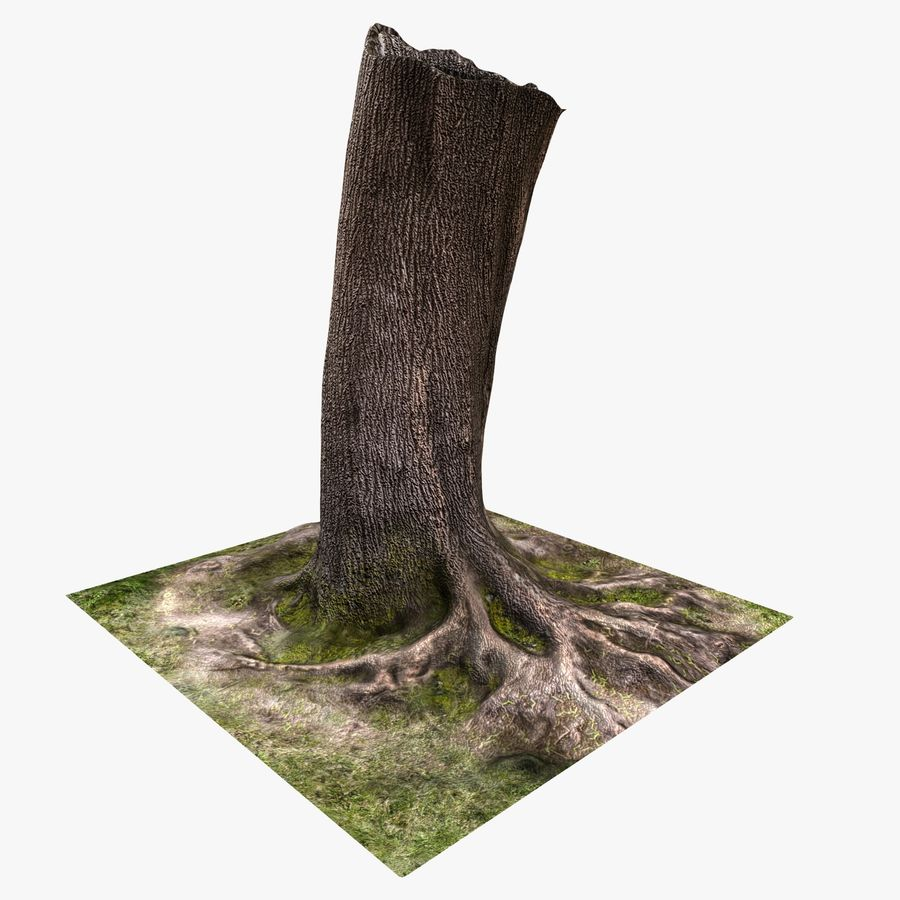 Tronco de arbol royalty-free modelo 3d - Preview no. 2
