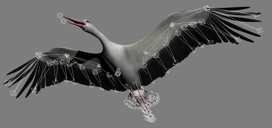 LOW POLY WHITE STORK 3D MODEL FULLY RIGGED & ANIMATED royalty-free 3d model - Preview no. 20