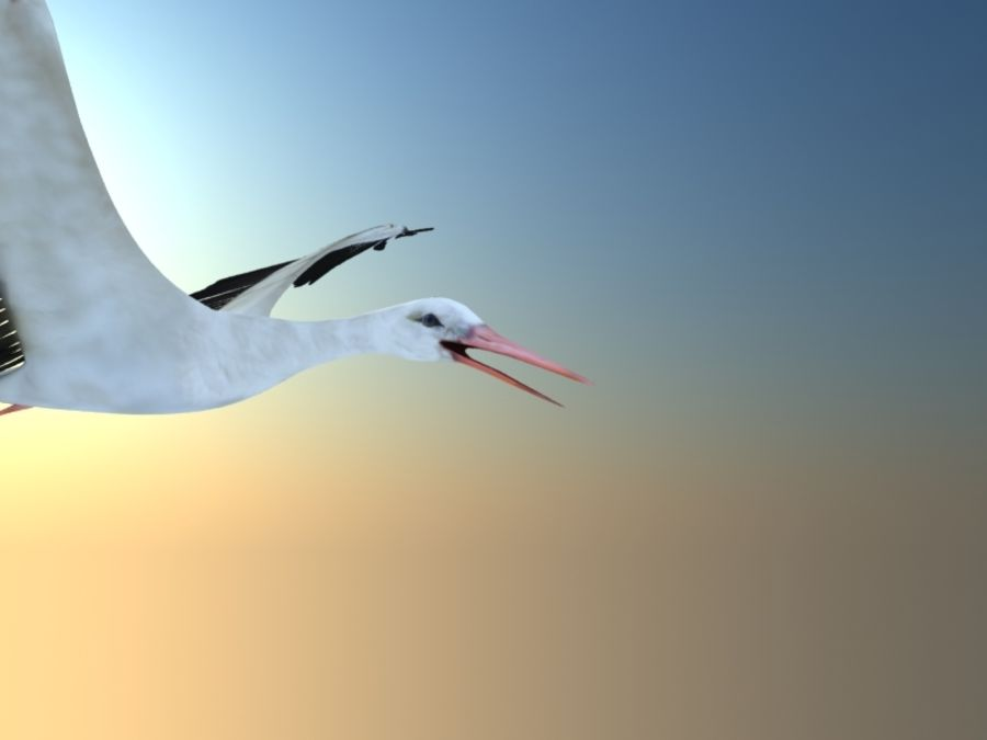 LOW POLY WHITE STORK 3D MODEL FULLY RIGGED & ANIMATED royalty-free 3d model - Preview no. 16