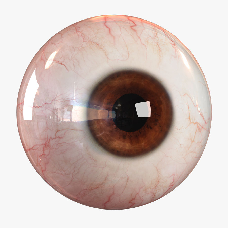Realistic Human Eye - Lite royalty-free 3d model - Preview no. 1