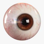 Realistic Human Eye - Lite 3d model