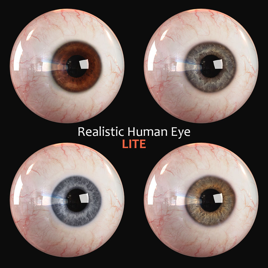 Realistic Human Eye - Lite royalty-free 3d model - Preview no. 3