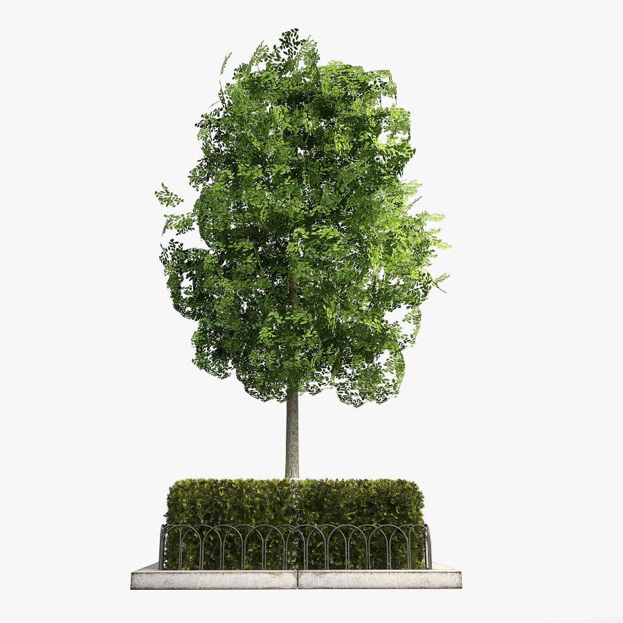Planteur d'arbres de rue royalty-free 3d model - Preview no. 1