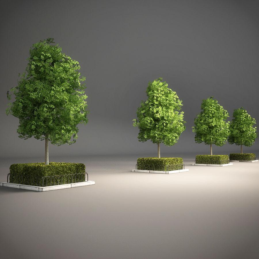 Planteur d'arbres de rue royalty-free 3d model - Preview no. 6