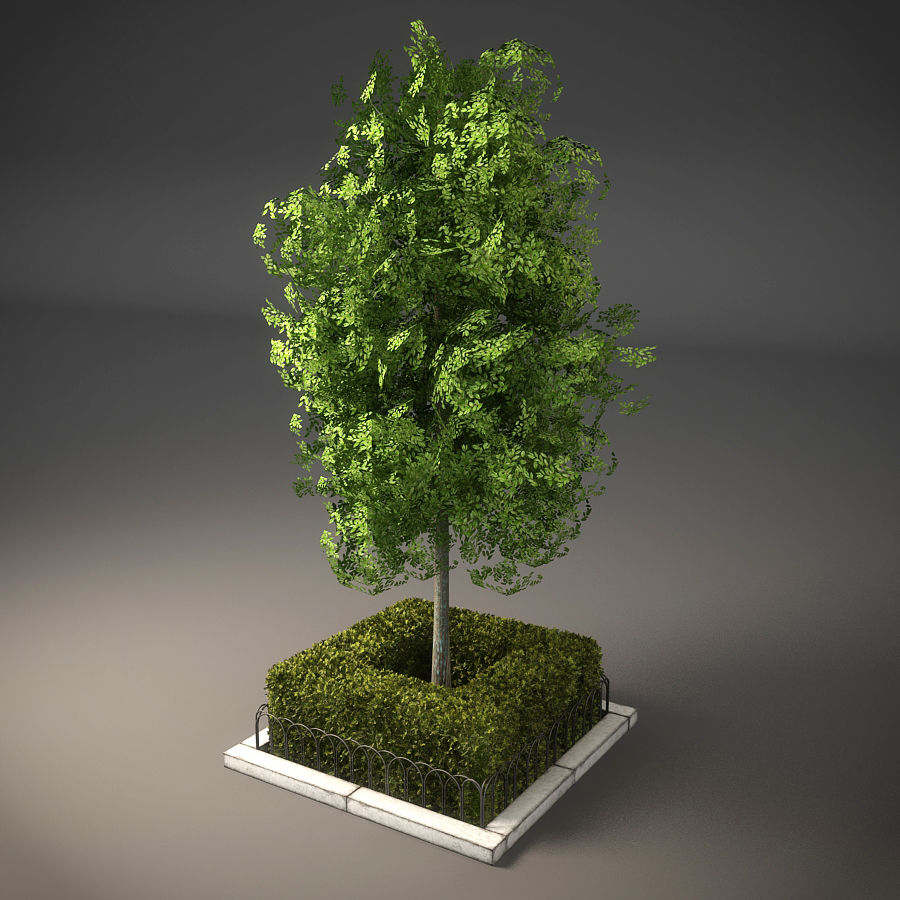 Planteur d'arbres de rue royalty-free 3d model - Preview no. 3