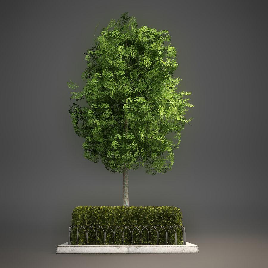 Planteur d'arbres de rue royalty-free 3d model - Preview no. 2