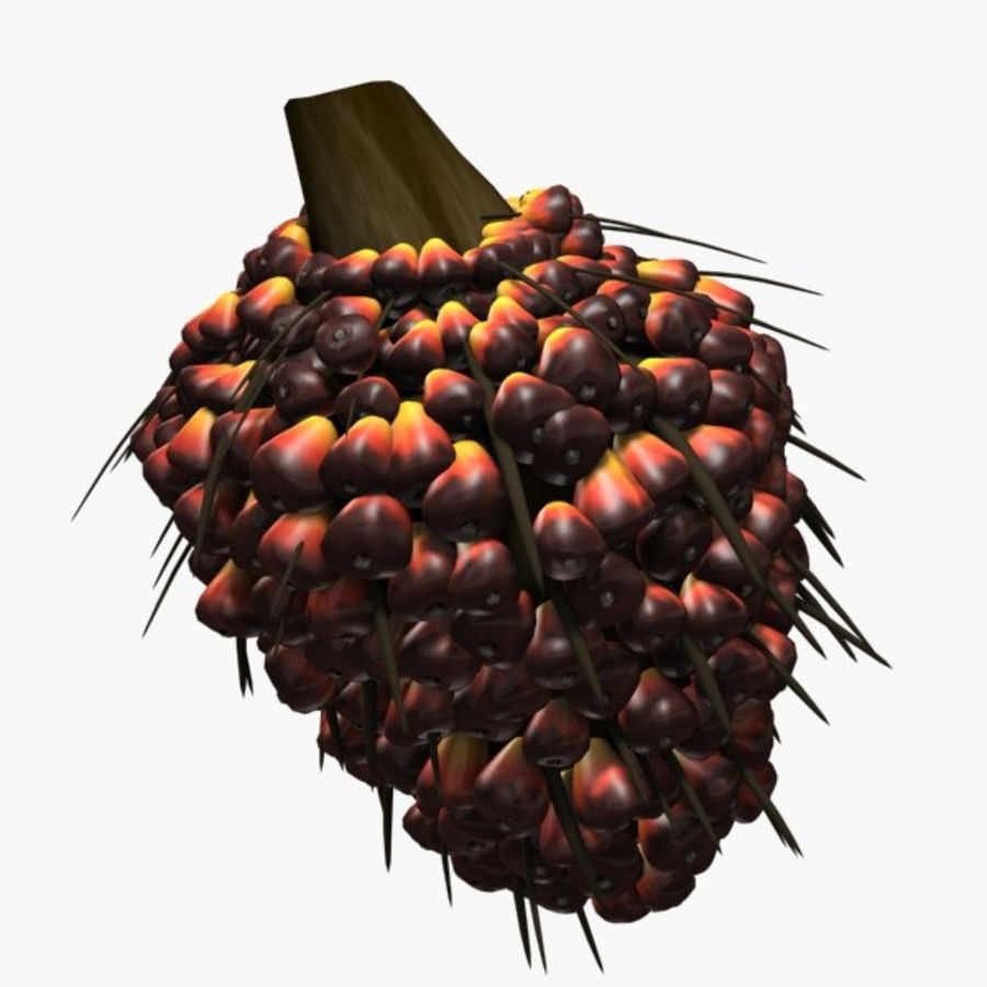 oil palm fruit royalty-free 3d model - Preview no. 1