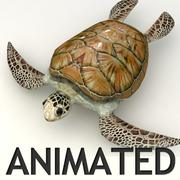 Sea Turtle Animated 3d model