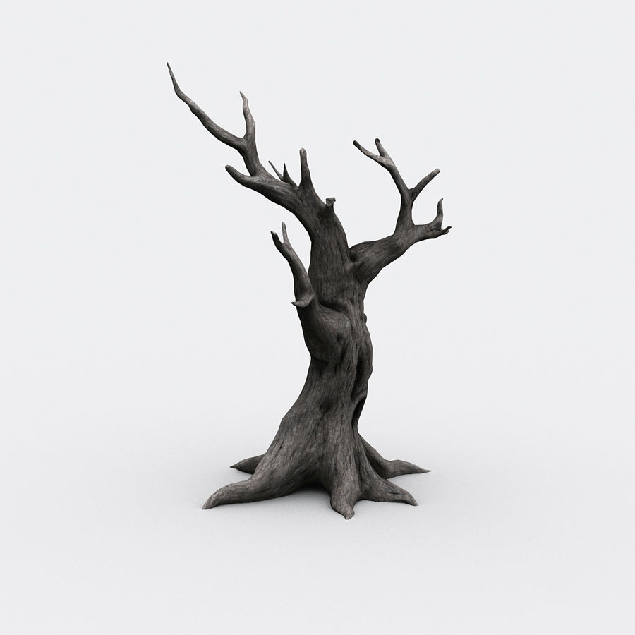 dead tree01 royalty-free 3d model - Preview no. 5