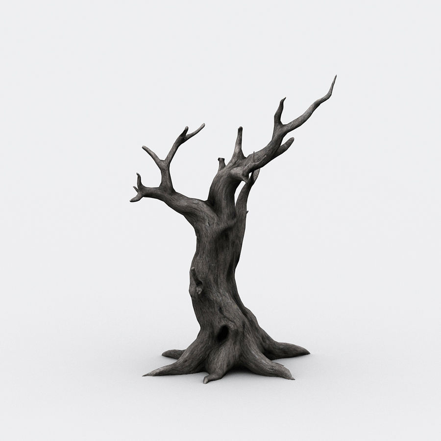 dead tree01 royalty-free 3d model - Preview no. 3