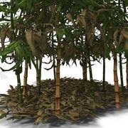 竹の茂み 3d model