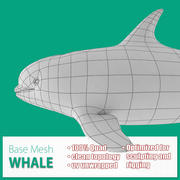 Siatka bazowa wieloryba 3d model