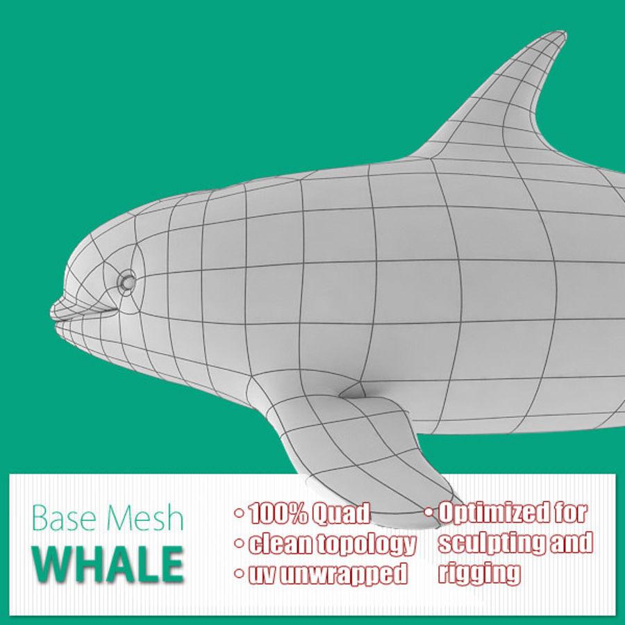 Siatka bazowa wieloryba royalty-free 3d model - Preview no. 1