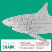 Köpekbalığı Tabanı Mesh 3d model