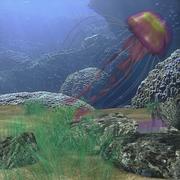 Jellyfish Rigged 3d model