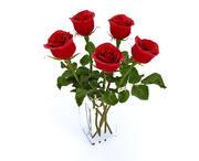 des roses 3d model