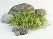 hakone gras hakonechloa macra 3d model