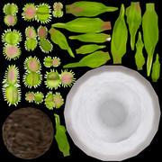 Mięsożerne rośliny 3d model